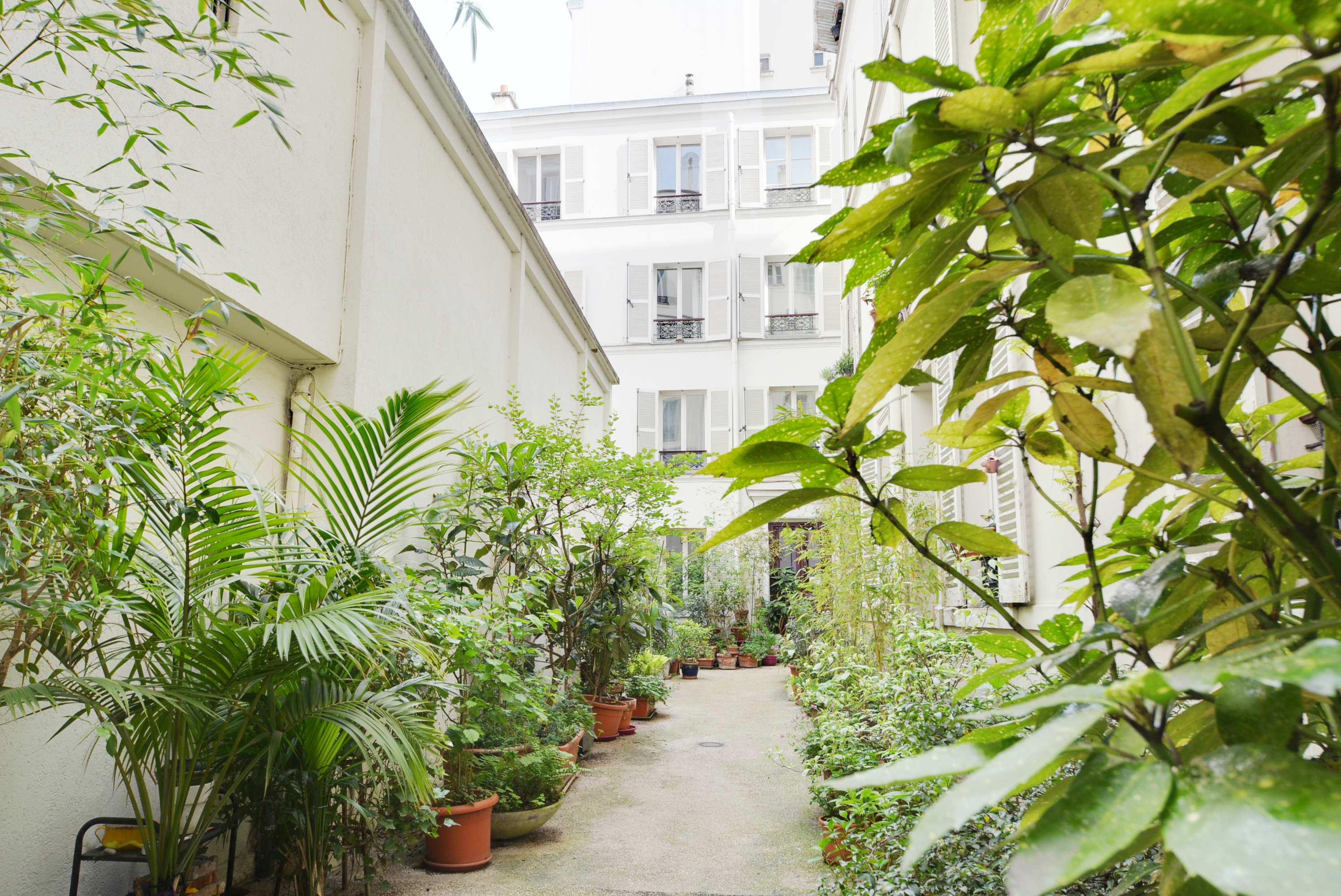 Dernier etage paris-allee